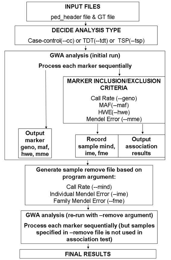 GWAS analysis - GenGen